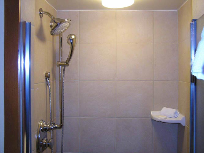 Moen Shower Remodel Marin